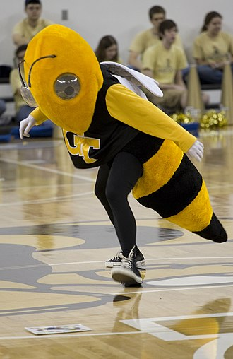 Buzz (mascot) - Buzz playing Twister at a basketball game