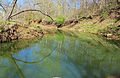 Gfp-missouri-st-louis.quiet-stream.jpg