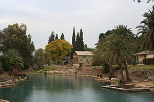 Nir David - The Asi river