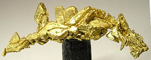 Porcupine Gold Rush - Specimen gold, probably from Pamour Mine.