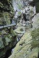 Gorges de la Fou, France 28.jpg