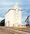 Grain silo at Minnipa, South Australia in 1998 (PJKnife BJJ-07).jpg