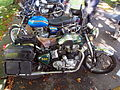 Green Royal Enfield 500 pic1.JPG