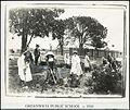 Greenwich Public School - gardening (19264385849).jpg