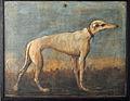 Greyhound, Giandomenico Tiepolo.jpg