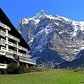 Grindelwald - panoramio (9).jpg