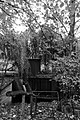 Großer Tiergarten in Berlin, Bild 6.jpg