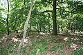 Großsteingrab Mühlensteine 07.JPG