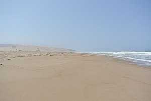 Guadalupe-Nipomo Dunes - Beach at the Guadalupe Dunes County Park