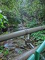 HK 北角 North Point 香花徑 Aroma Walk rain 23 Sewers Dec-2013.JPG