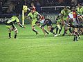 Harlequins vs Saints (9756800064).jpg