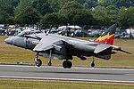 Harrier (5132431431).jpg