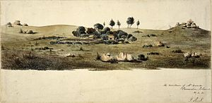 Preservation Island - A sealer's hut on a broad plain (1831)