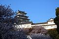 Himeji castle April 34.jpg