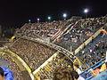 Hinchada Colo-Colo en Argentina.jpg