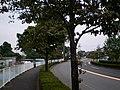 Hirai, Hinode, Nishitama District, Tokyo 190-0182, Japan - panoramio.jpg