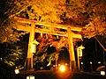 Hiyoshi Taisha Momiji 1.jpg