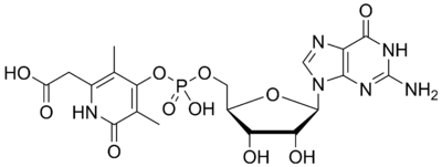 Hmd Catalyzed Reaction