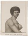 Homo sapiens - Nieuw-Caledonië - 1700-1880 - Print - Iconographia Zoologica - Special Collections University of Amsterdam - UBA01 IZ19500084.tif