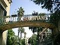 Hotel Tramontano - Sorrento - panoramio.jpg