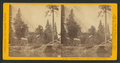 Huching's Hotel and Sentinel Rock, Yo Semite Valley, by John P. Soule 4.png