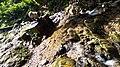 Ikogosi Warm water spring 16.jpg