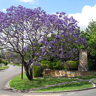 Inala, Queensland Suburb of Brisbane, Queensland, Australia