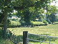 Into the thirties near Albrighton - geograph.org.uk - 206535.jpg
