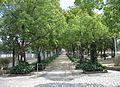 Izuo Park.JPG