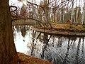 JESIENNY SPACER Kalisz park 13 - panoramio.jpg