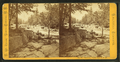 Jackson Falls, Upper, N.H, by Pease, N. W. (Nathan W.), 1836-1918.png