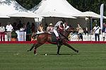 Jaeger-LeCoultre Polo Masters 2013 - 31082013 - Final match Poloyou vs Lynx Energy 53.jpg