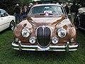 Jaguar (2858144837).jpg