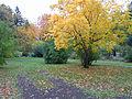 Jakobastad Skolparken.JPG