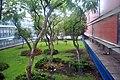 Jardín interno - Facultad de Filosofía y Letras de la UNAM.jpg
