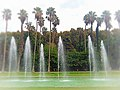 Jardin d'essai El Hamma 2.jpg
