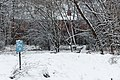 Jardin naturel (Paris) sous la neige 17.jpg