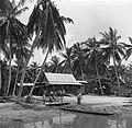 Javaanse kampong in de Van Drimmelenpolder in Nickerie, Bestanddeelnr 252-5530.jpg