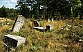 Jewish cemetery Otwock (Karczew - Anielin) IMGP7626.jpg