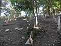 Jewish cemetery in Gdansk - panoramio - Sławek Zawadzki (6).jpg