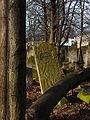 Jewish cemetery in Szydlowiec Poland 10.JPG