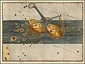 Johann Bayer -- Libra.jpg