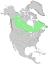 Juniperus horizontalis range map 0.png