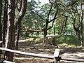 Jurapark, Solec Kujawski, Poland (www.juraparksolec.pl) - panoramio (14).jpg