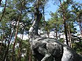 Jurapark, Solec Kujawski, Poland (www.juraparksolec.pl) - panoramio (24).jpg