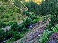 Kanjon reke Skakavac. Od ž.stanice Zlatibor ka Semegnjevu - panoramio.jpg