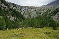"""Kaponigtal """"Moosboden"""" (1.949 m) mit Blick auf die Pfaffenberger Nocken.jpg"""