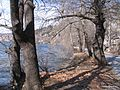 Kastoria 09.jpg