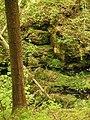 Kavinský potok (24).jpg