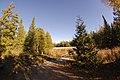 Kawartha Lakes, ON, Canada - panoramio (1).jpg